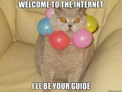 guide cat